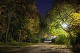 Fototapety Night park