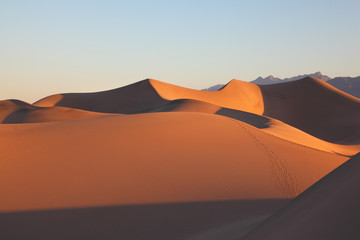 Clear graphic shapes of sand dunes at sunrise