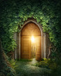 Mysterious entrance - 71806972