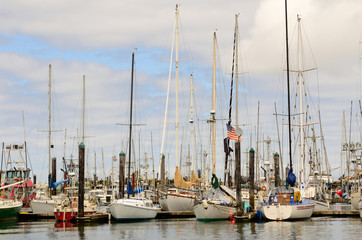 Commercial and private fishing boats at dock in Charleston OR