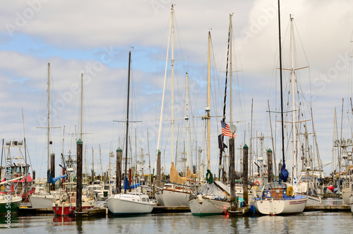 Commercial and private fishing boats at dock in Charleston OR  - 71807391