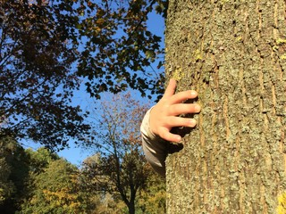 Kinderhand umarmt Baum