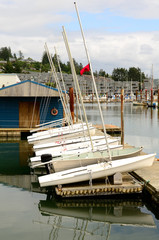 Line of small sail boats on the dock near Newport Oregon