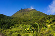 La Souffrière volcano in Guadeloupe - 71808168