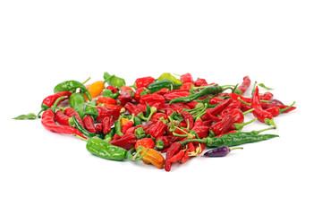 Viele verschiedene Chilis