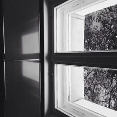 Fenster spiegelt sich