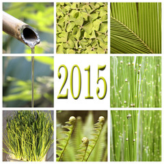 2015, green vegetation collage