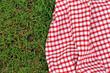 Leinwandbild Motiv checkered plaid for picnic on green grass