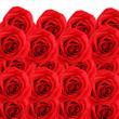 canvas print picture - collage background of fresh beautiful red roses