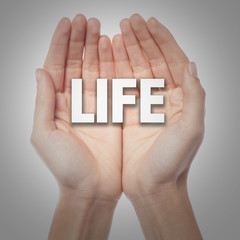 Open palms with word life
