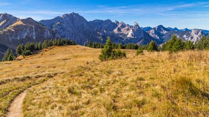 Alpenpanorama Allgäu | Ammergebirge