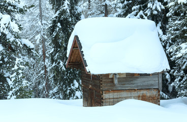 Wooden shed in winter fir forest