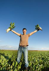 Farmer with sugar beets