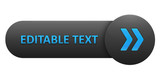 VECTOR BUTTON with EDITABLE TEXT (blue arrows)