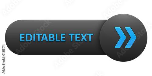 VECTOR BUTTON with EDITABLE TEXT (blue arrows) - 71815174