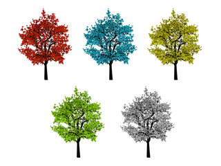 Five leafy colored trees isolated on white