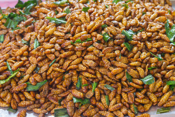 Fired silkworms in the market