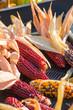 canvas print picture - colorful corn