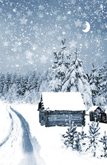 The village in winter forest