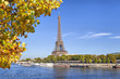 Eiffel Tower with a yellow tree on the front, Paris