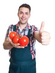 Junger Gärtner mit Tomaten zeigt den Daumen