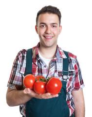 Lachender junger Gärtner mit Tomaten