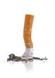 Cigarette butt - 71826370