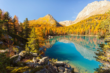 lago in ambiente autunnale