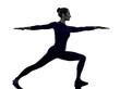 woman exercising Virbhadrasana II warrior pose yoga silhouette