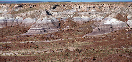 Petrified logs lay around a mesa in the painted desert.