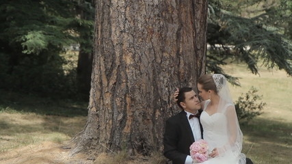 Newlyweds are sitting in the park near the tree