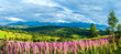 canvas print picture - Summer mountain country panorama (Gliczarow Gorny, Poland)