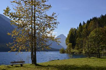 Ruhebank am Plansee, Tirol