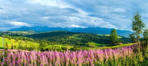 Summer mountain country panorama (Gliczarow Gorny, Poland)