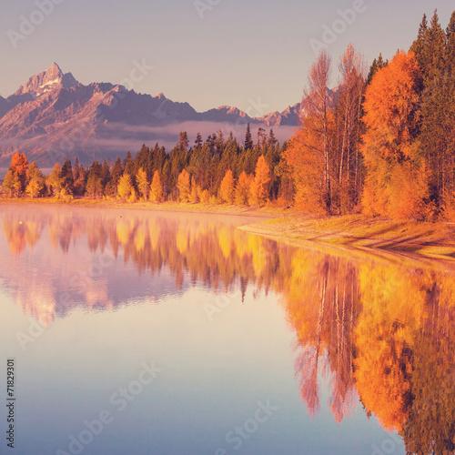 Poster Oranje eclat Autumn in Grand Teton