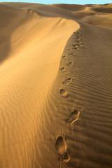 Human footsteps in sand in Desert