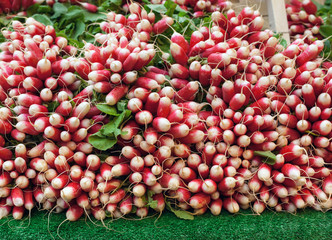 Stall of radishes