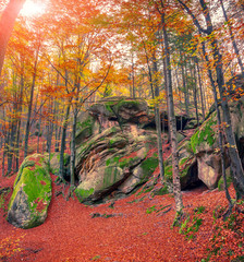 Huge rock in the autumn forest.
