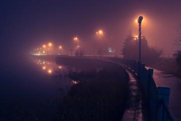 City shore in fog. Night scene.