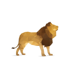Abstract lion isolated on a white backgrounds