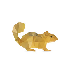 Abstract squirrel isolated on a white backgrounds