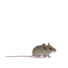 Abstract rat isolated on a white backgrounds