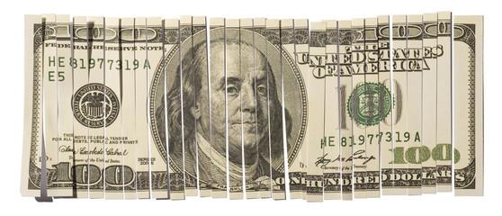 Shredded Hundred Dollar Bill