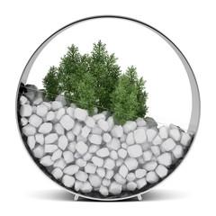 houseplant in metallic pot isolated on white background