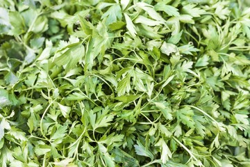 Green parsley for sale at marketplace