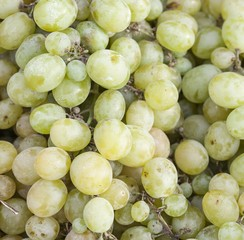 Green grapes for sale on the sun light