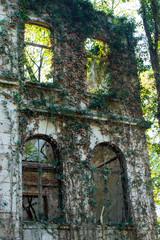 Ruine vor Bäumen