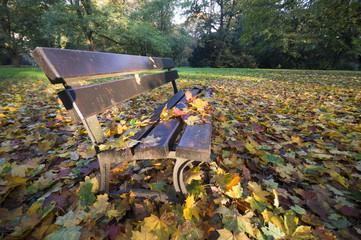 opadłe liście leżące na ławce w parku