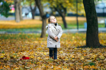 Cute little girl on playground in autumnal park