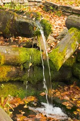 source of natural mineral water in the autumn forest
